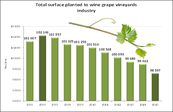 Total Hectares under Wine Grapes