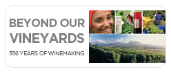 Beyond Our Vineyards e-book